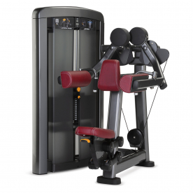 Life Fitness Insignia Series Lateral Raise
