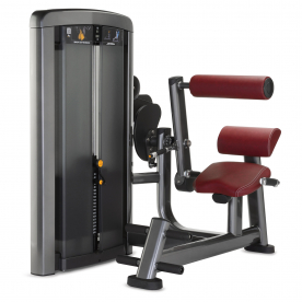 Life Fitness Insignia Series Back Extension
