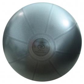Fitness-MAD 55cm Studio Pro Anti-burst 500kg Swiss Ball