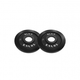 Body Power 2.5Kg Machined Cast Iron Olympic Weight Plates (x2)