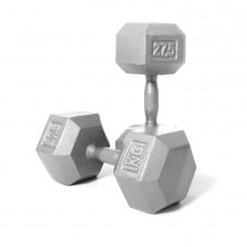 Body Power 27.5kg Hex Dumbbell (x2)