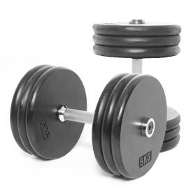 Body Power 30kg Pro-style Dumbbells (x2)