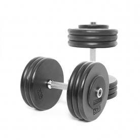 Body Power 32.5Kg Pro-style Dumbbells (x2)