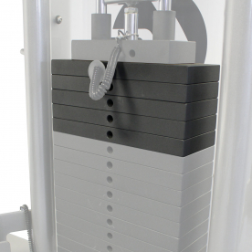 Life Fitness 50lb Weight Stack Upgrade (Fits G2 or G4)