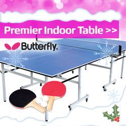 Butterfly Indoor Table Tennis Christmas Idea Image