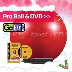 Go Fit Christmas Idea Image